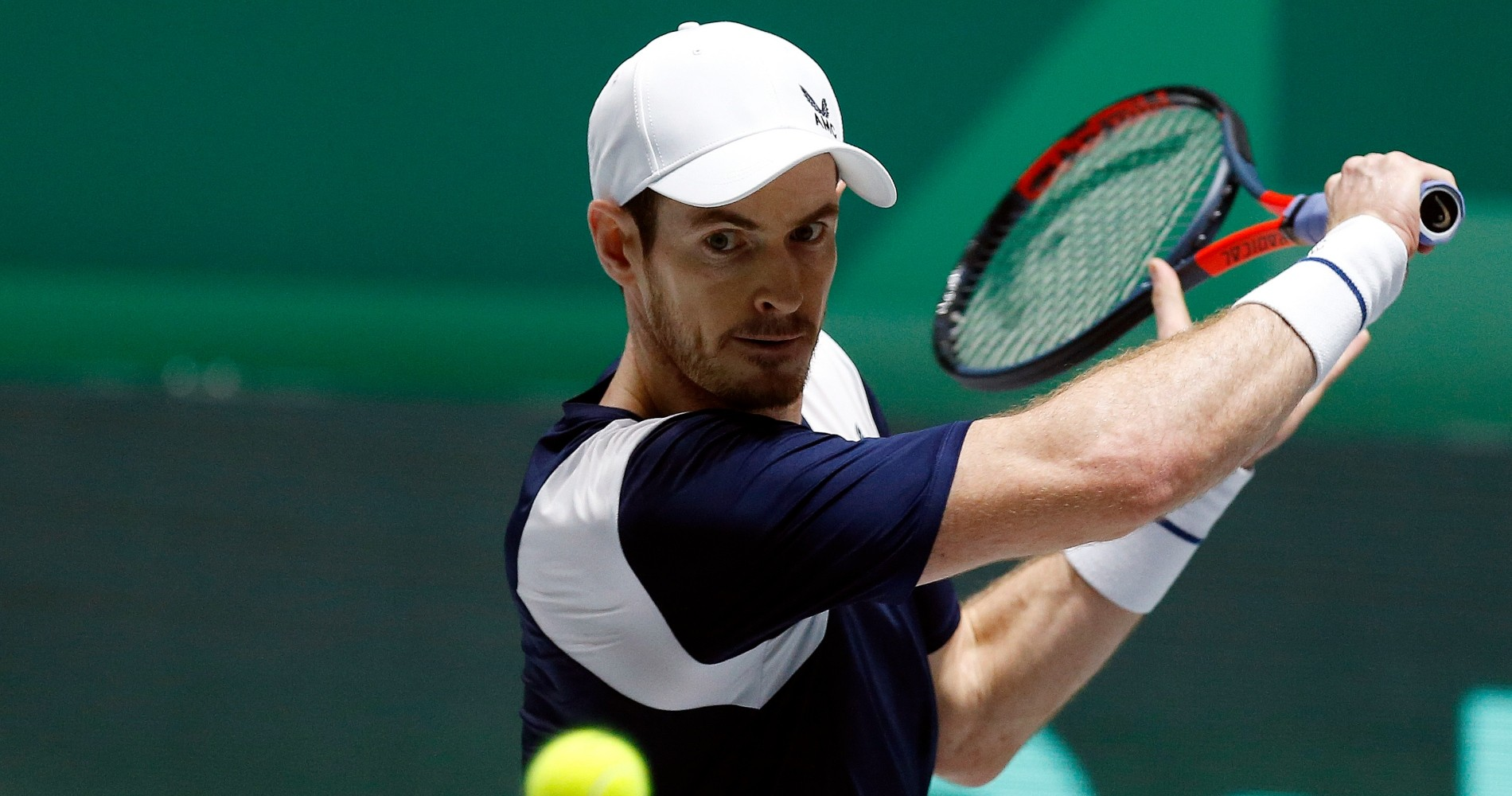 Andy Murray (Great Britain), 2019 Davis Cup