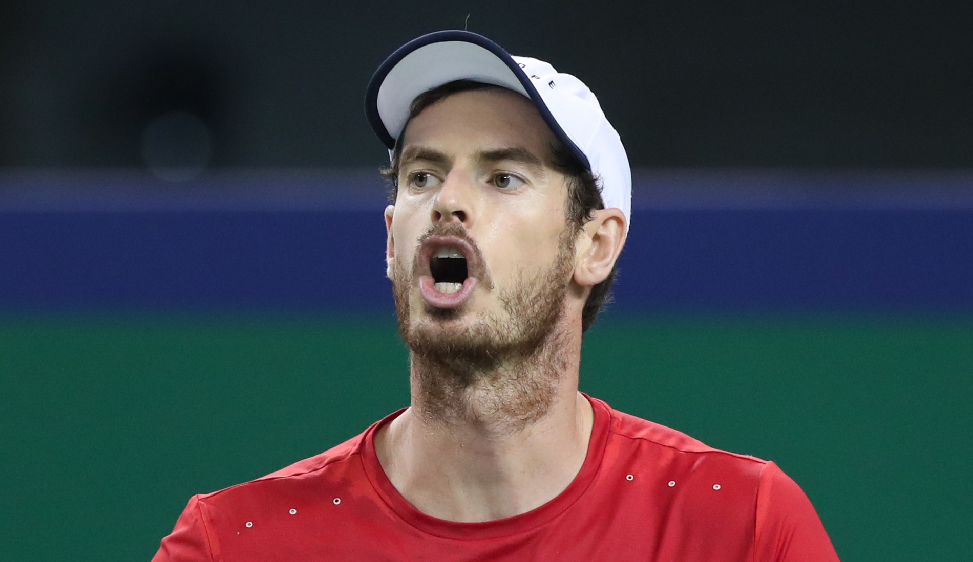 Andy Murray in 2019