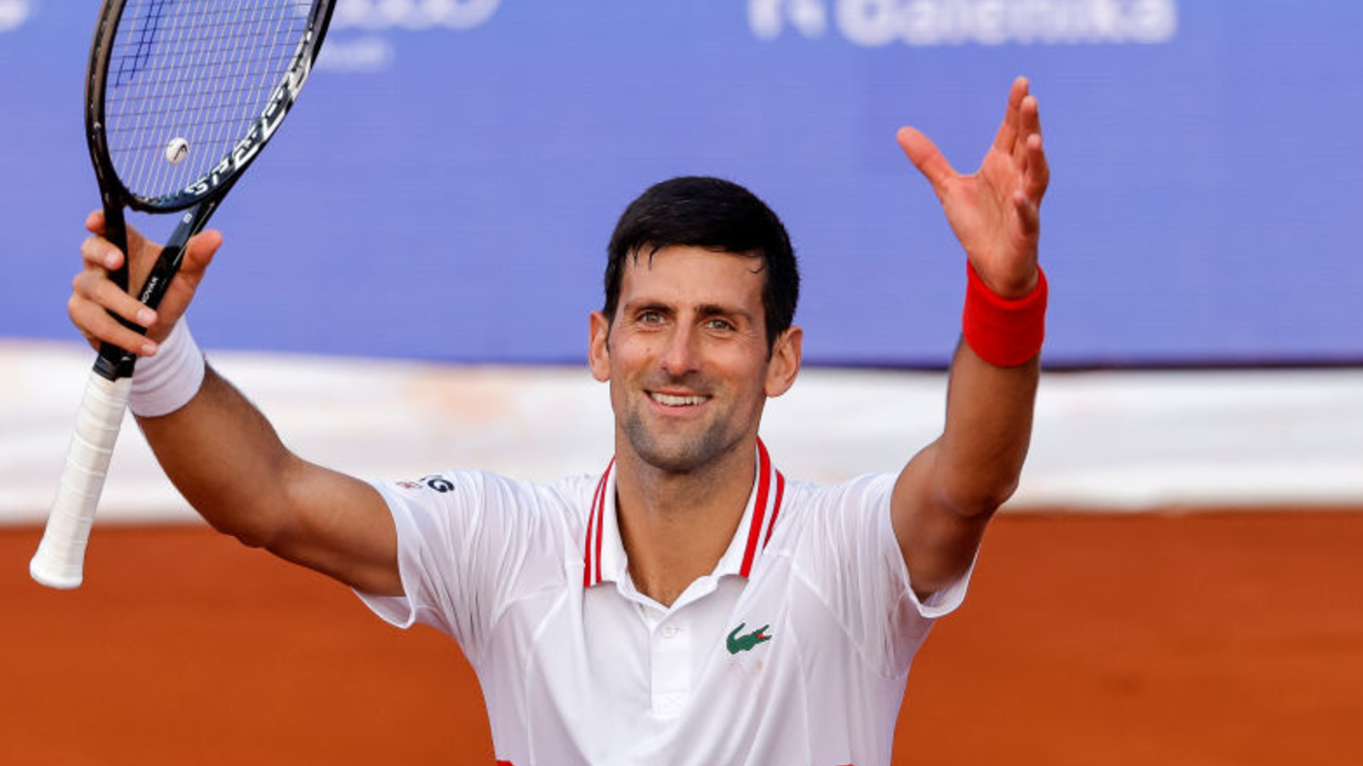 Djokovic celebration